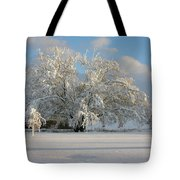 October Surprise 1872 Tote Bag