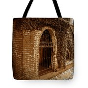 Old Savannah Tote Bag