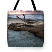 Old Tree Trunk On A Beach  Tote Bag