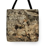 On The Edge Of Glory Tote Bag