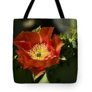 Orange Prickly Pear Blossom  Tote Bag