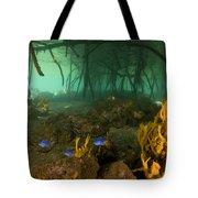 Orange Sponges Grow Tote Bag