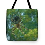 Orb Spider      Summer           Indiana Tote Bag