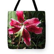 Orienpet Lily Named Scarlet Delight Tote Bag