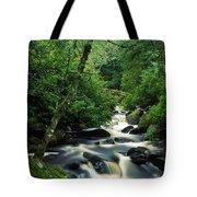 Owengarriff River, Killarney National Tote Bag