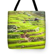 Paddy Rice Fields Tote Bag