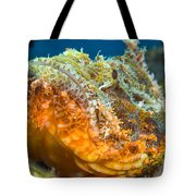 Papuan Scorpionfish Lying On A Reef Tote Bag