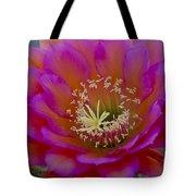 Pink And Orange Cactus Flower Tote Bag
