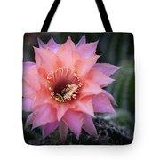 Pink Echinopsis Tote Bag