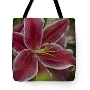 Pink-lily Tote Bag