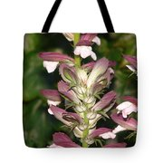 Plant And Flower Tote Bag