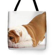 Playful Bulldog Pup Tote Bag