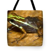 Poison Frog With Eggs Tote Bag