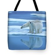 Polar Bear Ursus Maritimus Pair On Ice Tote Bag