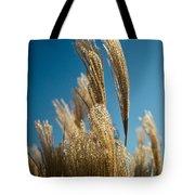 Pompas Grass 1 Tote Bag