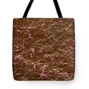 Potable Water Biofilm Tote Bag