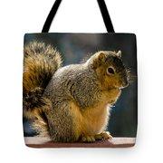 Praying Squirrel  Tote Bag