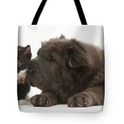 Pup & Kitten Making Friends Tote Bag