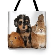 Pup, Guinea Pig And Rabbit Tote Bag
