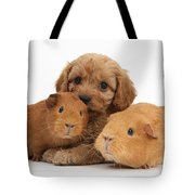 Puppy And Guinea Pigs Tote Bag