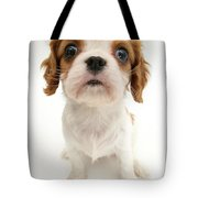 Puppy Tote Bag by Jane Burton