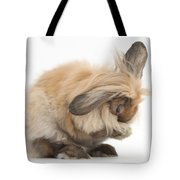 Rabbit Grooming Tote Bag
