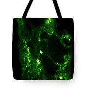 Radiation From Uranium Ore Conglomerate Tote Bag