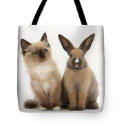 Ragdoll-cross Kitten And Young Rabbit Tote Bag