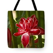 Red Ginger Lily Tote Bag