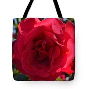 Red Rose Tote Bag by Saifon Anaya