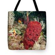 Red Sponge Tote Bag