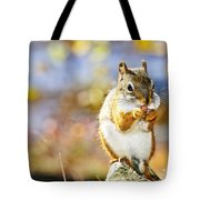 Red Squirrel Tote Bag by Elena Elisseeva