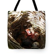 Red-winged Blackbird Babies And Egg Tote Bag