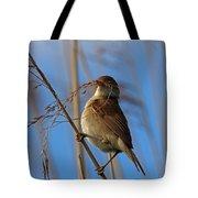 Reed Warbler Tote Bag