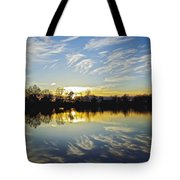 Reflections Tote Bag by Brian Wallace