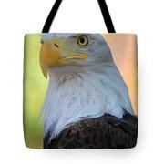 Regal Eagle Tote Bag