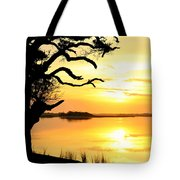 Remember When Tote Bag by Karen Wiles