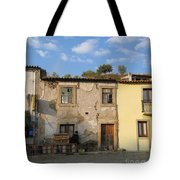 Renew Tote Bag by Arlene Carmel
