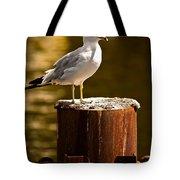 Ring-billed Gull On Pillar Tote Bag