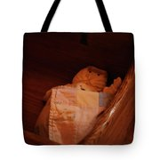 Rock-a-bye My Baby Tote Bag