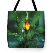 Rose Bud Tote Bag
