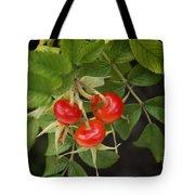 Rosehips Tote Bag