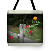 Roses And Fence  Tote Bag