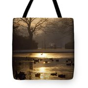 Saint Stephens Green, Dublin, Co Tote Bag