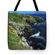 Saltee Islands, Co Wexford, Ireland Tote Bag