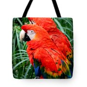 Scalet Macaw Tote Bag