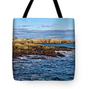 Schoodic Point Acadia National Park Tote Bag
