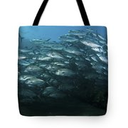 School Of Trevally Swimming By, Bali Tote Bag