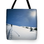 Scott Cooper Backcountry Skiing Tote Bag