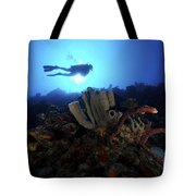 Scuba Diver Swims By Some Large Sponges Tote Bag